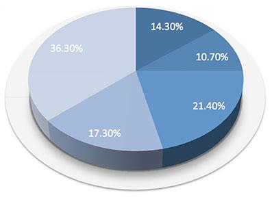 pie chart example